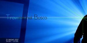 Trovarsi nel Bosco